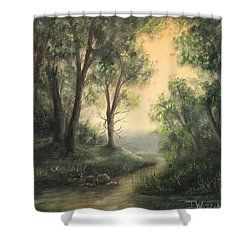 Quiet Stream  Shower Curtain