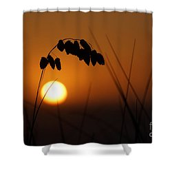Shower Curtain featuring the photograph Quiet Sunset by Inge Riis McDonald