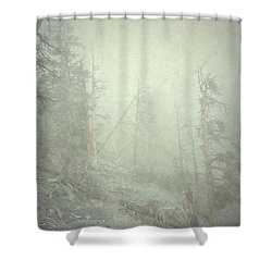 Quiet Type Shower Curtain
