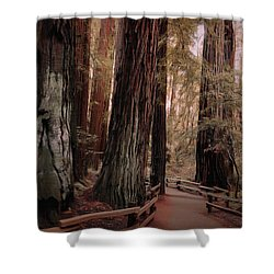 Quiet Walk Shower Curtain