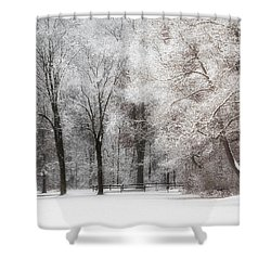 Quiet Winter  Shower Curtain