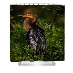 Quietude Shower Curtain