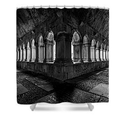 Shower Curtain featuring the photograph Quin Abbey by Dennis Hedberg