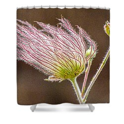 Quirky Red Squiggly Flower 1 Shower Curtain