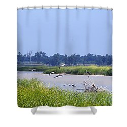 Quivira Refuge Shower Curtain