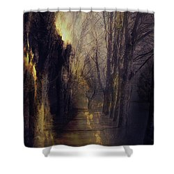Quo Vadis  -  Memory Lane Shower Curtain by AugenWerk Susann Serfezi