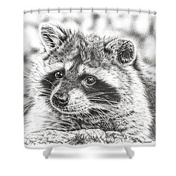 Raccoon Shower Curtain