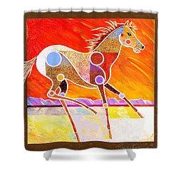 Racing The Desert Shower Curtain