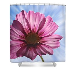 Radiant Cosmos Shower Curtain by Yumi Johnson