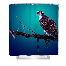 Radiant Raptor Shower Curtain