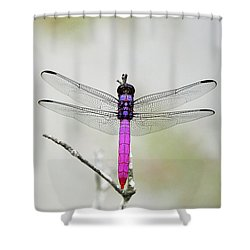 Radiant Roseate Shower Curtain