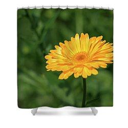 Radiant Summer Flower Soaking It Up Shower Curtain
