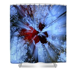 Radience Shower Curtain
