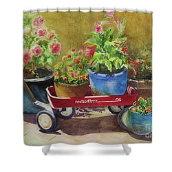 Radio Flyer Shower Curtain