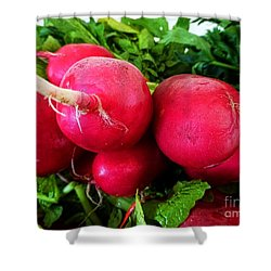Radish Bottoms Shower Curtain by Dee Flouton