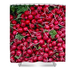 Radishes Shower Curtain by Thomas Marchessault