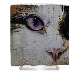Ragdoll Cat Shower Curtains