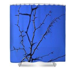 Ragged Edges Shower Curtain