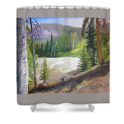 Raging River Shower Curtain by Sherril Porter