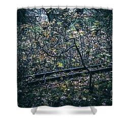 Rail Shower Curtain
