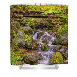 Railroad In The Woods Shower Curtain