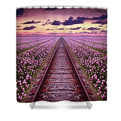 Railway In A Purple Tulip Field Shower Curtain