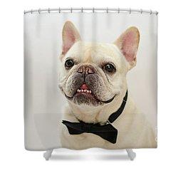 Raimy 2 Shower Curtain