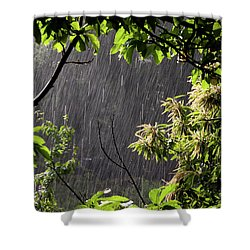Rain Shower Curtain by Bruno Spagnolo