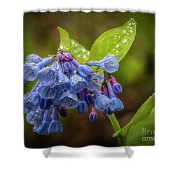 Rain Drop Bells Shower Curtain