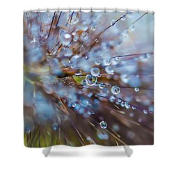 Shower Curtain featuring the photograph Rain Drops - 9751 by G L Sarti