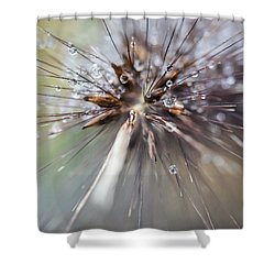 Shower Curtain featuring the photograph Rain Drops - 9756 by G L Sarti