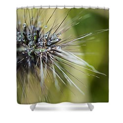 Shower Curtain featuring the photograph Rain Drops - 9760 by G L Sarti