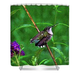 Rain Drops Keep Fallen On My Head Shower Curtain