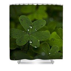 Rain Drops On Clover Shower Curtain