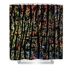 Rain Forest  Shower Curtain by Amar Sheow