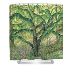 Rain Forest Washington State Shower Curtain