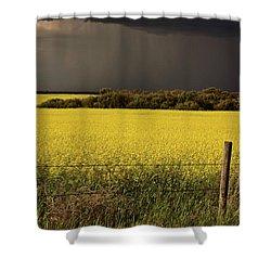 Rain Front Approaching Saskatchewan Canola Crop Shower Curtain by Mark Duffy