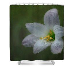 Rain Lily Shower Curtain