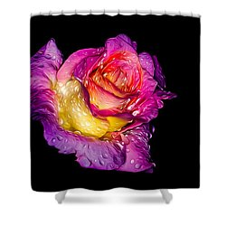 Rain-melted Rose Shower Curtain