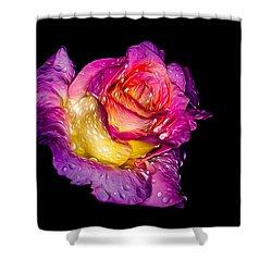 Rain-melted Rose Shower Curtain
