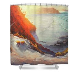 Rain Of The Sun Shower Curtain