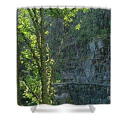 Shower Curtain featuring the photograph Rain On Rainier - Mt. Rainier by Jane Eleanor Nicholas