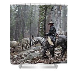 Rain Riding Shower Curtain by Diane Bohna