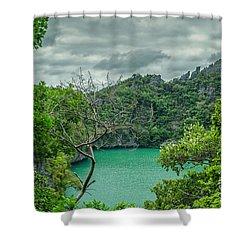 Rain Season Shower Curtain by Michelle Meenawong