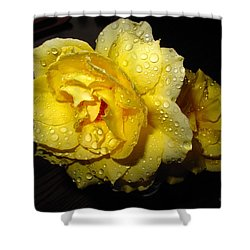 Shower Curtain featuring the photograph Rain Soaked Yellow Rose by Joyce Dickens