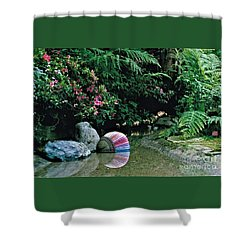 Rainbow 2 Shower Curtain by Delores Malcomson
