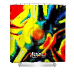 Shower Curtain featuring the photograph Rainbow Bliss #051347 by Barbara Tristan