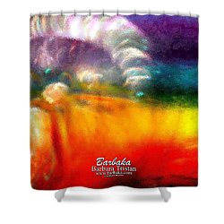 Shower Curtain featuring the photograph Rainbow Bliss #052833_ii by Barbara Tristan
