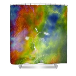 Rainbow Bridge Shower Curtain by Veikko Suikkanen