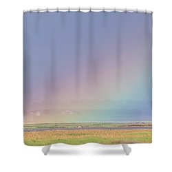 Rainbow Close Up Shower Curtain